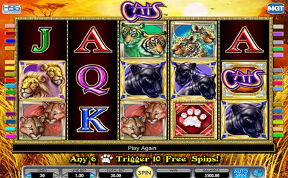 Cats Screenshot