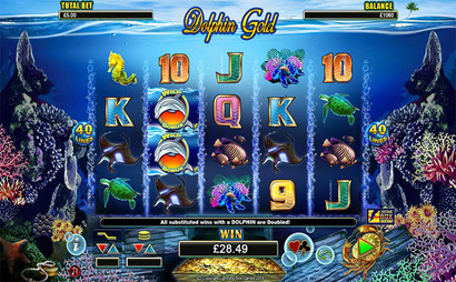 Dolphin Gold Screenshot
