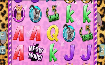Meow Money Screenshot