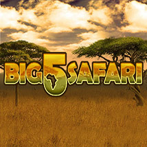 Big-5-Safari