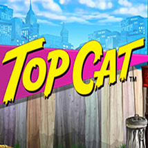 Top-Cat