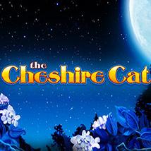 Cheshire-Cat
