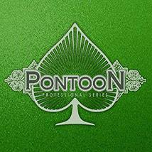 Pontoon-Professional