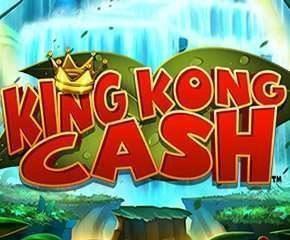 Kingkong Cash