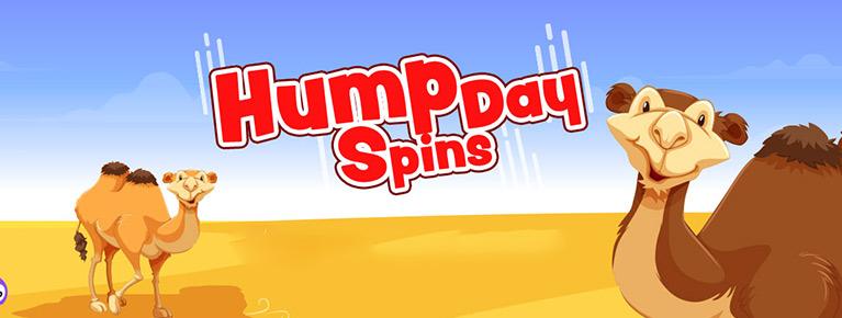 HUMP DAY BINGO!