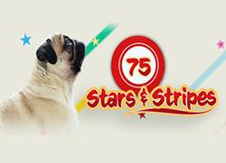 75 Stars & Stripes