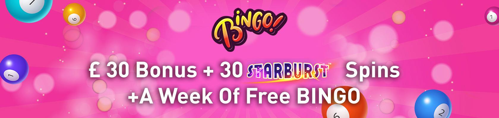 Online Bingo Banner