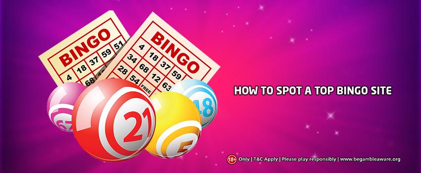 Factors to Consider When Choosing An Online Bingo Site