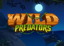 Wild Predator
