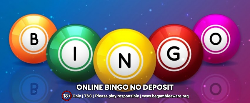 Should I Go For Online Bingo No Deposit Sites? How Do They Work?