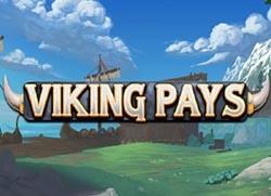 Viking Pay