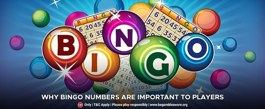 Bingo Numbers and Calls: A List OF Bingo Nicknames